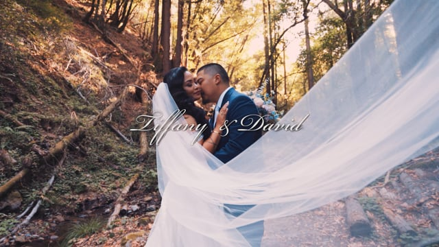 Tiffany & David – Wedding Highlight